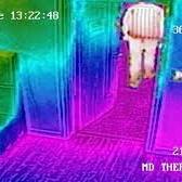 Eksempel på bilde fra termisk kamera som viser forskjeller i varme (illustrasjon)